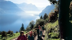 Summer walking trails